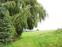 Bild 3 Gut Vogelbusch in Heiligenhaus