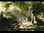 Bild 1 Vishers Garten-und Landschaftsbau GmbH in D�sseldorf