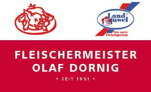 Logo von Dornig Olaf