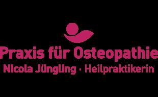 Logo von Jüngling Nicola