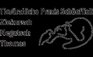 Bild zu Tierärztliche Praxis Schönfließ Ziekursch, Negatsch, Thomas in Schönfliess Gemeinde Mühlenbecker Land