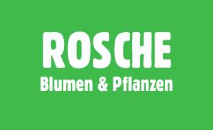 Bild zu Rosche, Carola - Fleurop-Partner in Berlin