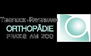 Tenbrock-Rayermann