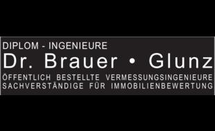 Brauer Dr. Hubertus und Glunz Wolfgang