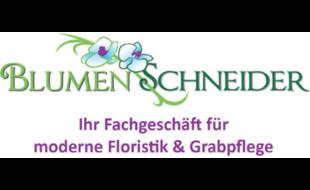 Bild zu Blumen Schneider Friedhofsgärtnerei in Düsseldorf