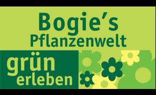 Bogie ´s Pflanzenwelt