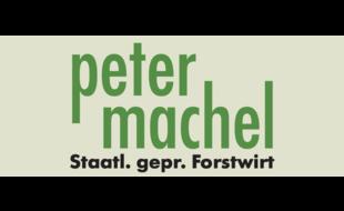 Baumfällungen Peter Machel