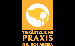 Dr. Cosima Bouassiba