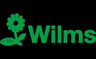 Bild zu Blumen Wilms in Homberg Stadt Ratingen