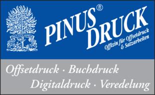 Pinus Druck