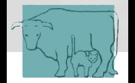 Bild zu Tierarztpraxis Tutzing Dr. Kerstin Schwarzer in Tutzing