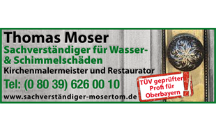 Moser Thomas Malermeister und Restaurator