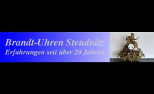 Bild zu BRANDT, HOLGER in Dorndorf Steudnitz Stadt Dornburg Camburg