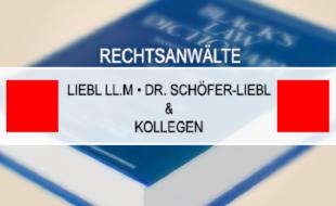 Bild zu Schöfer-Liebl Nicola Dr. in München