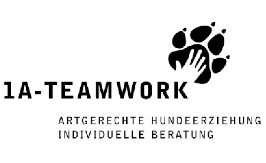 1A-TEAMWORK, Claudia Wagner