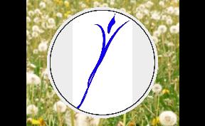 Bild zu Ergotherapie Peißenberg Detlev Grzenia in Peißenberg