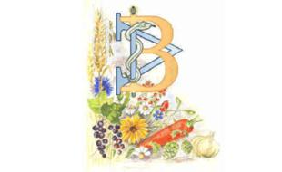 Bild zu Naturheilpraxis Alfred Bauhofer seit 1976 in Bad Reichenhall