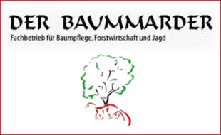 Bild zu Der Baummarder in Golmsdorf