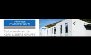 Logo von Thüringer Präzisionsfedern GmbH