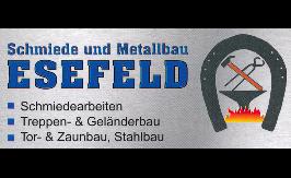 Bild zu Schmiede u. Metallbau Esefeld in Langenschade Gemeinde Unterwellenborn