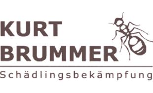 Logo von Brummer Kurt