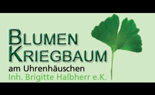 Logo von Blumen Kriegbaum