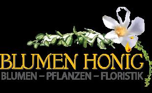 Bild zu Honig Maria Blumen & Pflanzen in Sulzbach Rosenberg