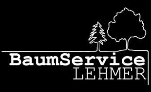 Bild zu Baum Service Lehmer in Schwandorf