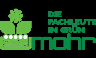 Mohr-Hydrokultur