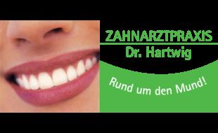 Bild zu Hartwig Markus Dr.med.dent. in Kelheim