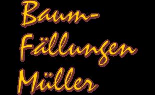 Baum-Fällungen Lars Müller