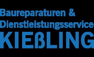 Bild zu Baureparaturen & Dienstleistungsservice Udo Kießling in Pahrenz Gemeinde Hirschstein