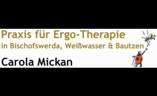 Bild zu Ergotherapie Carola Mickan in Weißwasser in der Oberlausitz