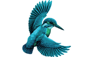 Logo von Physiotherapie Vita-Stil