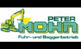 Bild zu Mohn Peter GmbH & Co. KG in Besigheim
