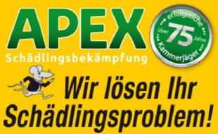 Bild zu APEX GmbH Schädlingsbekämpfung in Stuttgart