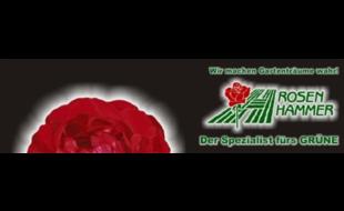 Logo von Rosen Hammer