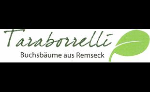Logo von Taraborrelli