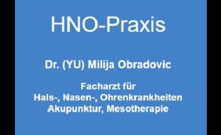 Bild zu Dr. (YU) M. Obradovic, HNO-Facharzt in Kornwestheim