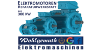 Kundenlogo Wohlgemuth Elektromaschinen