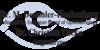 Kundenlogo von Demmler-Hackenberg M. Dr., Tacke Christine Dr.