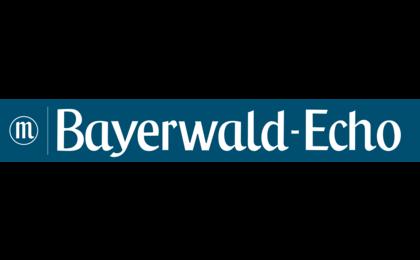Bayerwald Echo Cham Polizeibericht