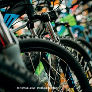 Bild von Mlady Fahrrad GmbH