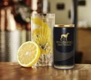 It's all about Gin – Mit Dry Tonic als perfekten Begleiter
