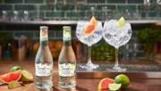 Gordon's Ultra Low Alcohol Gin and Tonic flavoured drink launches across GB and Europe