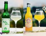 Beverage competition: Symrise taste helps propel aloe vera and curry sodas to the winner's podium