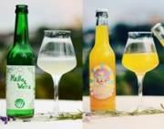 Getränkewettbewerb: Symrise-Geschmack bringt Aloe Vera- und Curry-Limonade auf das Siegerpodest