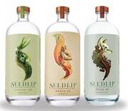 Diageo acquires majority shareholding in Seedlip, the world's first distilled non-alcoholic spirit
