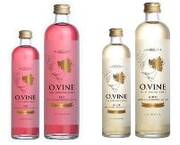 O.Vine Wine Essence Waters Tap UK Trends
