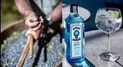 BOMBAY SAPPHIRE® auf der Mission, der nachhaltigste Gin der Welt zu werden